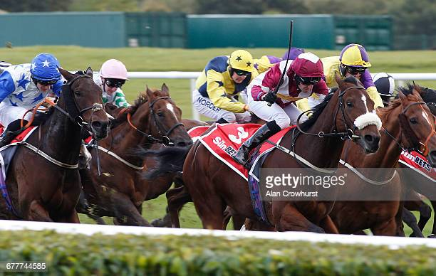 Tony Hamilton riding Soie D'Leau win The sunbetscouk Top Price Temlegate Tips Handicap Stakes at Doncaster Racecourse on October 22 2016 in Doncaster...