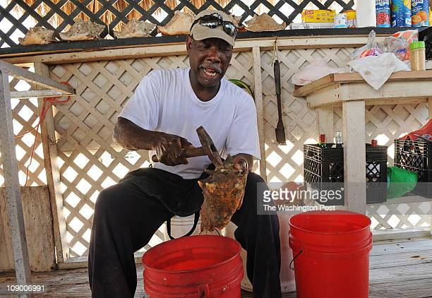 Tony Hanna cracks a conch shell in his conch stand at Taino Beach on February 6 2011 in Freeport Bahamas Tony has been selling all sorts of different...
