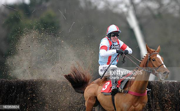 Tony McCoy just about clears the last on Kapga De Cerisy to win The Kilbrittain Castle novices steeple chase at Sandown Park racecourse on February...