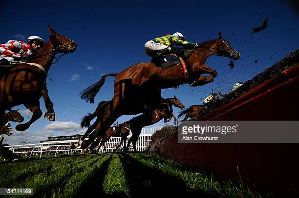 Tony McCoy riding Another Trump on their way to winning The simplythebesteventscouk Handicap Steeple Chase at Huntingdon racecourse on October 16...