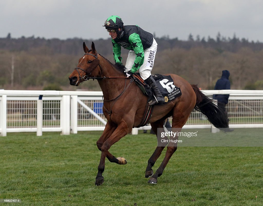 Tony McCoy riding Firm Order makes his way down the home straight on his last ride at Ascot during the Davidstow Veterans' Handicap Steeple Chase at Ascot Racecourse on March 29, 2015 in Ascot, England.