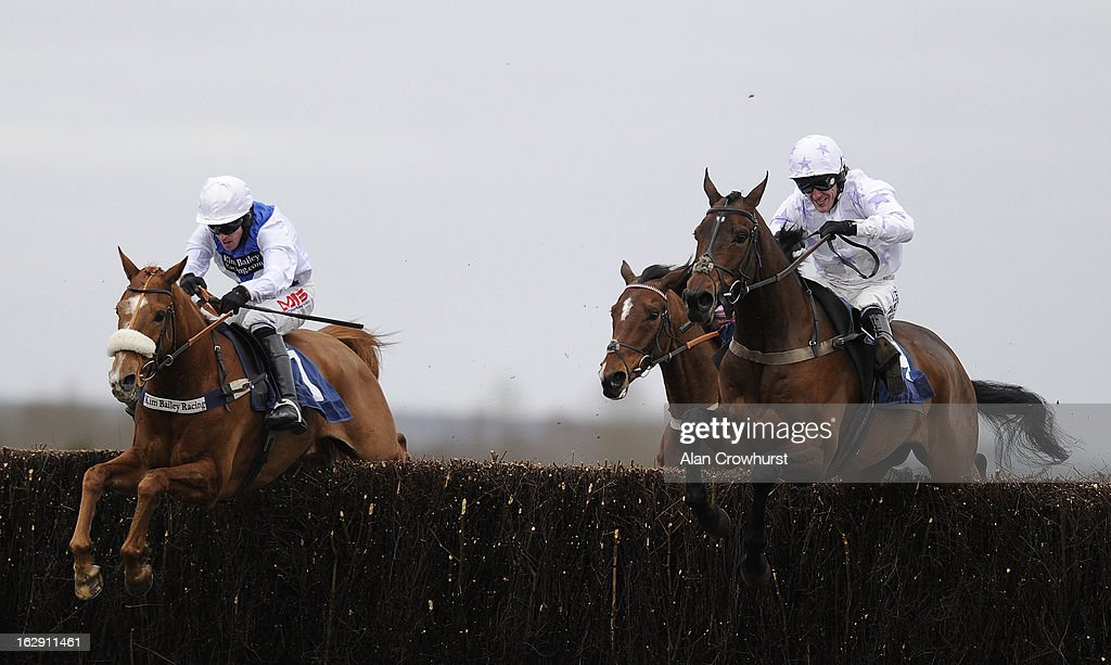 Tony McCoy riding Twirling Magnet (R) clear the last to win The Zenergi Novices' Handicap Steeple Chase at Newbury racecourse on March 01, 2013 in Newbury, England.