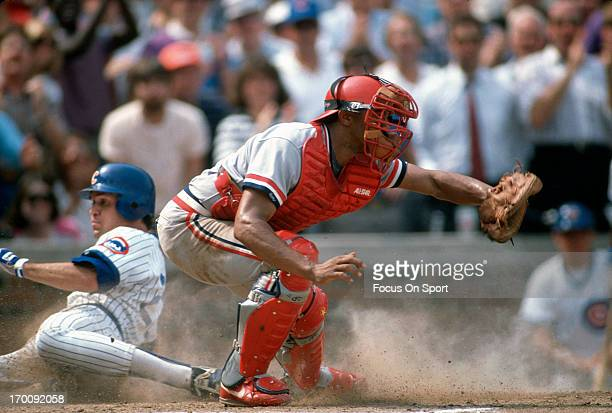 Tony Pena of the St. Louis Cardinals takes the throw as Ryne Sandburg of the Chicago Cubs slides in safe at home during an Major League Baseball game...