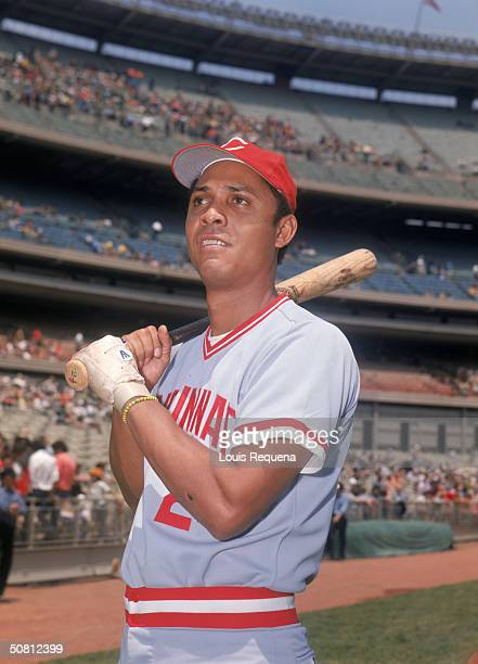 Tony Perez of the Cincinnati Reds poses for a portrait Perez played for the Reds from 19641976 and returned 19841986