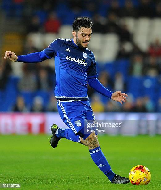Tony Watt of Cardiff City during the Sky Bet Championship match between Cardiff City and Brentford at the Cardiff City Stadium on December 15 2015 in...
