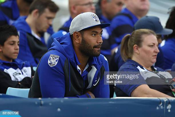 Tony Williams of the Bulldogs watches on from the grand stand during the round 10 NRL match between the Wests Tigers and the Canterbury Bulldogs at...