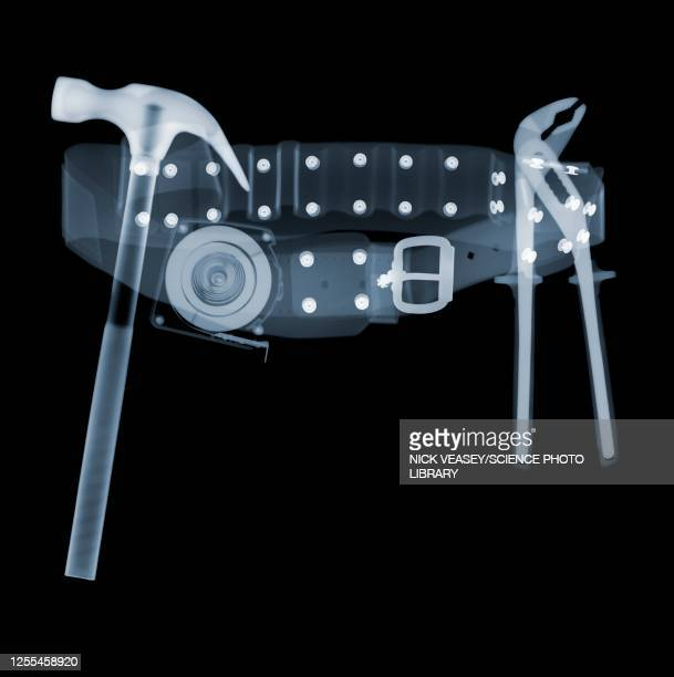 tool belt, x-ray - belt stock pictures, royalty-free photos & images