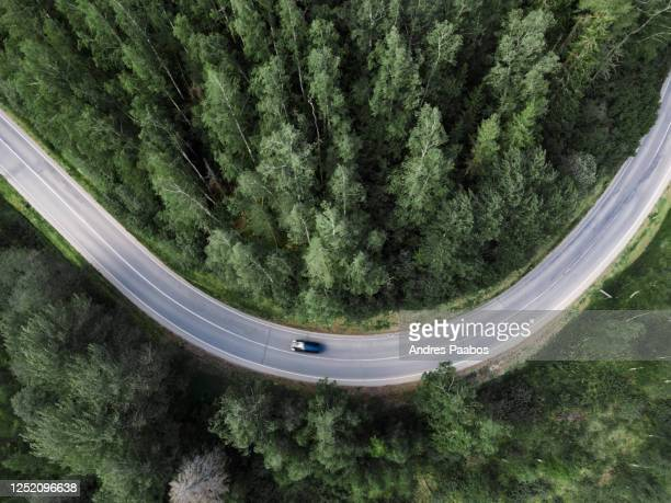 top down aerial view of a winding road in the middle of a forest - estonia fotografías e imágenes de stock