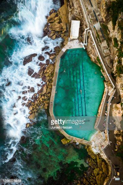 top down aerial view of sydney rock pool at sunrise with swimmers - sydney stock pictures, royalty-free photos & images