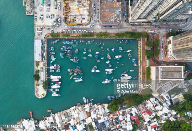 top down view of the yau tong harbor in a residential area of kowloon in hong kong - marina stock pictures, royalty-free photos & images