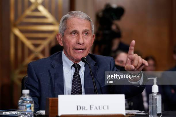Top infectious disease expert Dr. Anthony Fauci responds to accusations by Sen. Rand Paul, R-Ky., as he testifies before the Senate Health,...