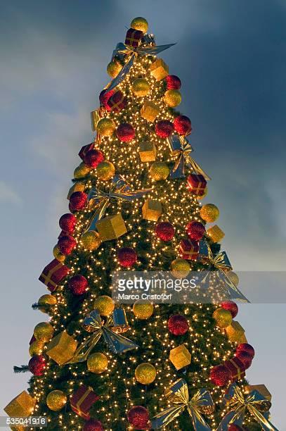 Top of Christmas Tree