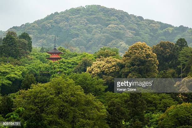 Top of red pagoda seen in a large Japanese forest with hills at Kiyomizudera