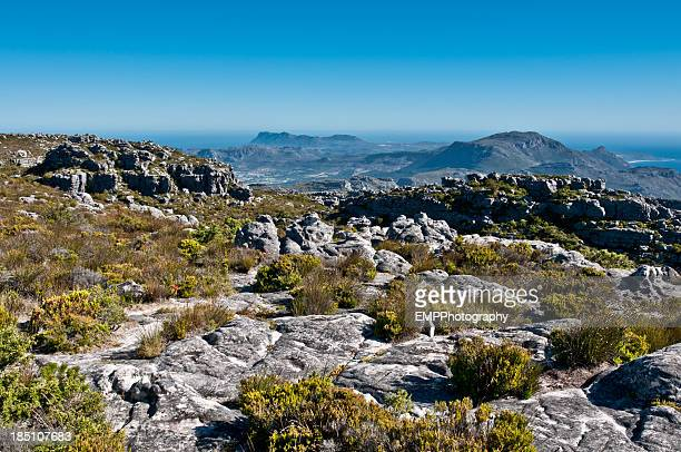 Mit der Table Mountain National Park