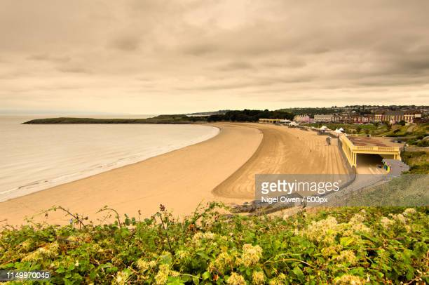 top of the headland - nigel owen stock pictures, royalty-free photos & images