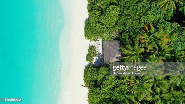 top view beach bungalow on white sand, surrounded by tropical palm trees, high angle ocean sea - shack stock pictures, royalty-free photos & images