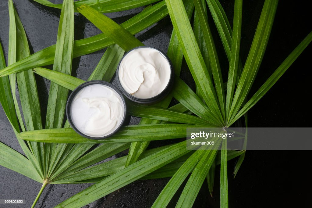 top view beauty cream with green leaves and wet background : Stock-Foto