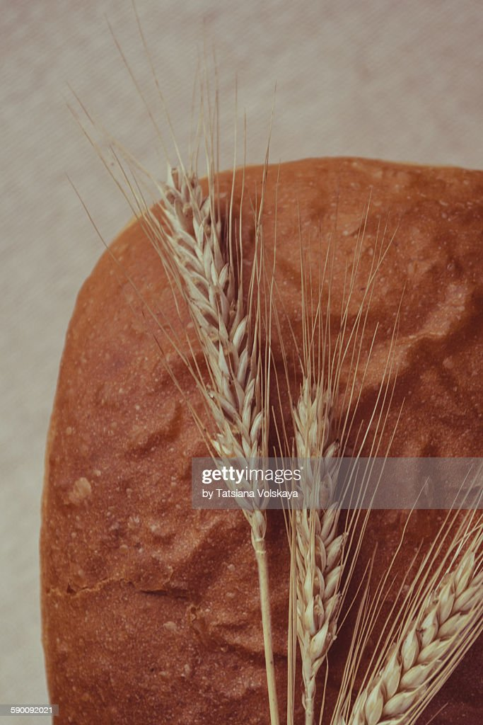Top view macro bread with ears : Stock Photo