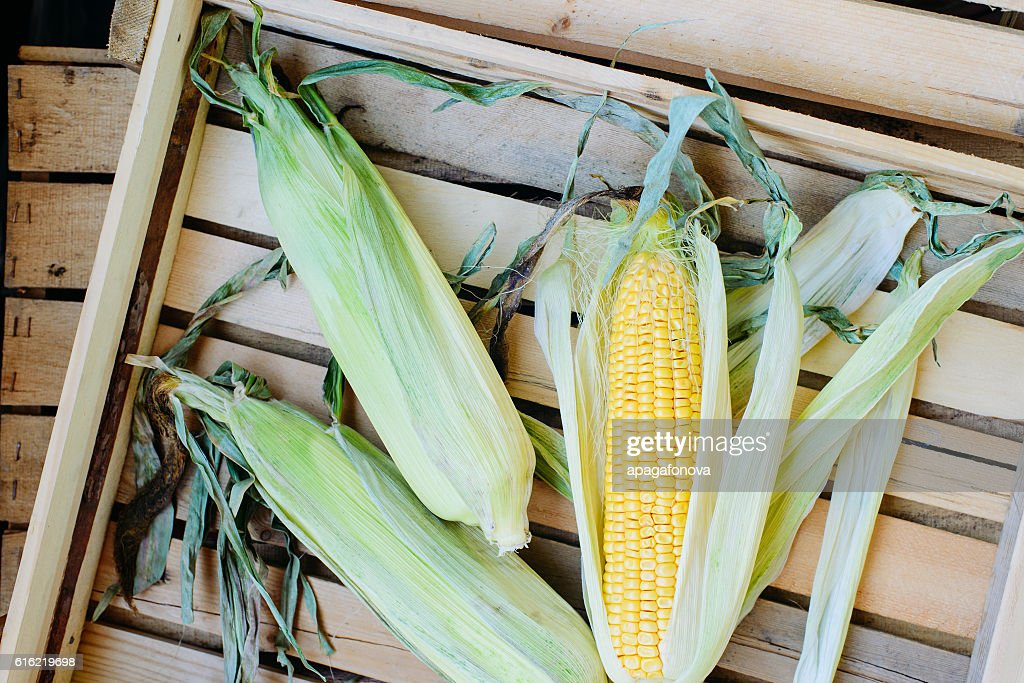 top view of cob corn on the wooden background : Stock Photo