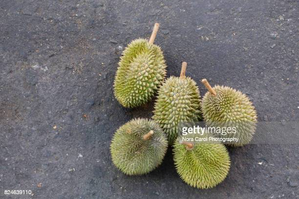 Top View of Durian