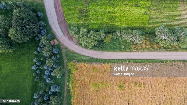Top view of farmland, Eastern Iceland