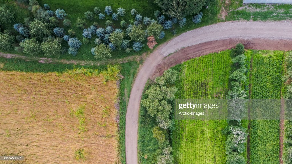 Top view of farmland, Eastern Iceland : Stock Photo