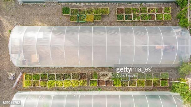 top view of greenhouse - gewächshäuser stock-fotos und bilder