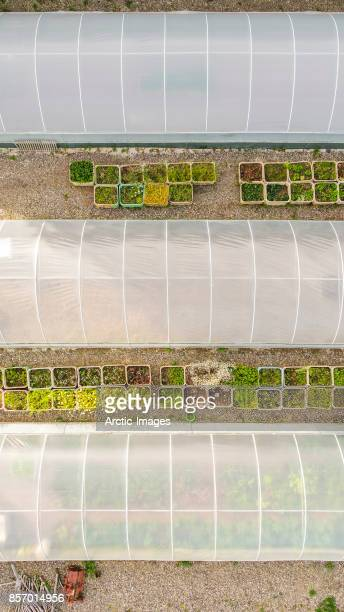 Top view of Greenhouse