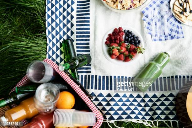 top view of healthy picnic snacks on a blanket - picnic blanket stock pictures, royalty-free photos & images