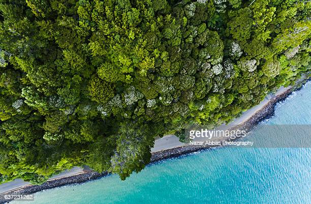 Top view of Huia Beach along the road, Auckland, New Zealand.