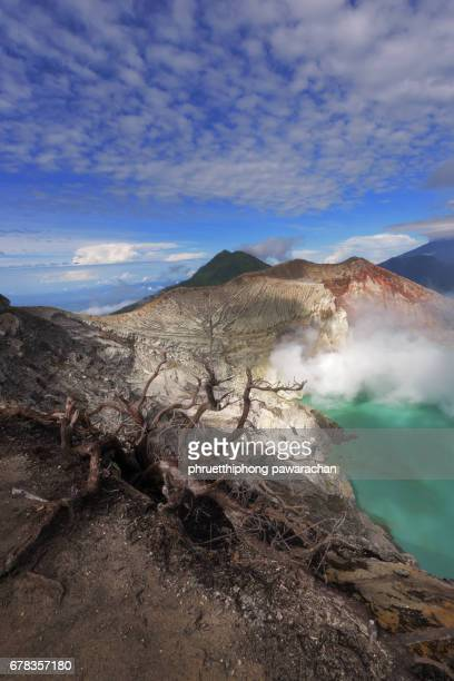 top view of kawah ijen crater lake with dead tree as foreground, java, indonesia. - sulfuric acid stock photos and pictures