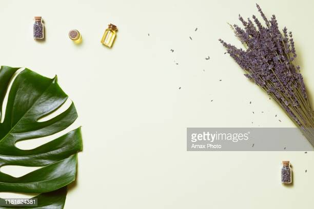 top view of lavender oil body care products with sunlight. aromatherapy, spa and natural healthcare concept, flat lay - natural condition stock pictures, royalty-free photos & images
