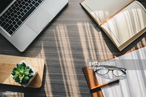 top view of objects such as notebook, computer, paper, pen, eyeglasses on the table in working office. - ornamental plant stock pictures, royalty-free photos & images
