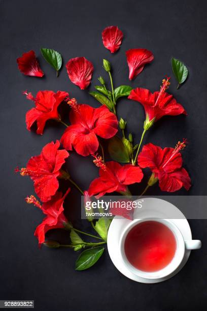 top view of one cup of hibiscus black tea on black background. - hibiscus stock pictures, royalty-free photos & images