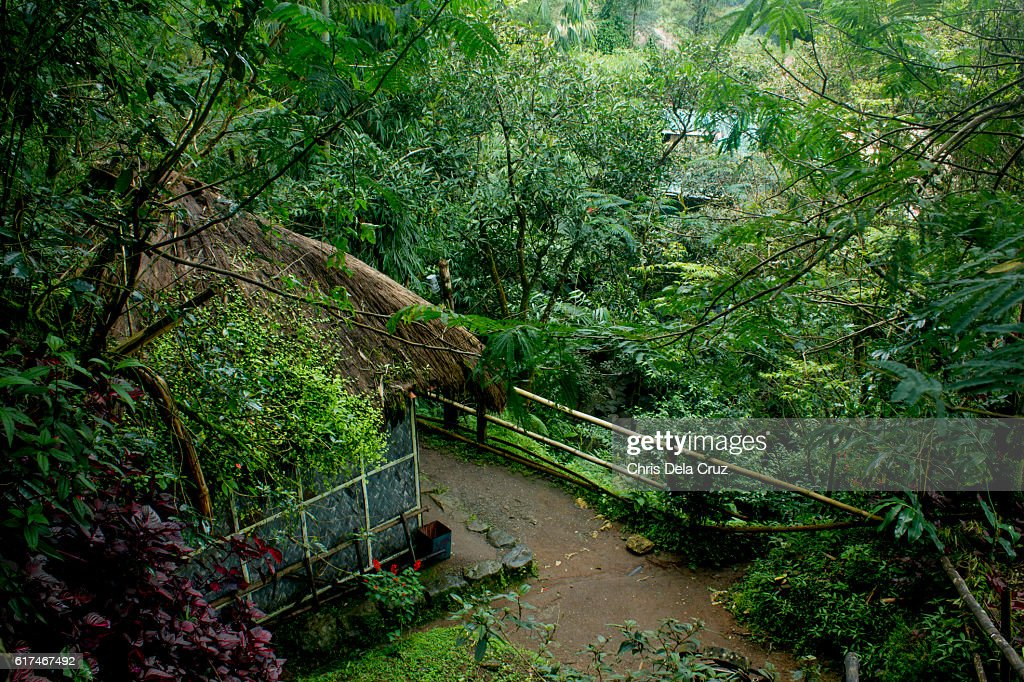 Top view of the gardens in Tam-awan village : Stock Photo