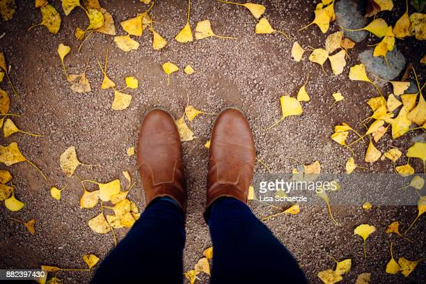 top view on brown boots in autumn - leather boot stock pictures, royalty-free photos & images