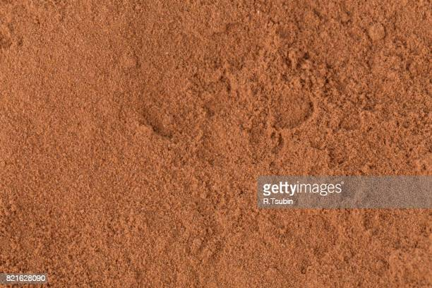 Top view on cocoa powder