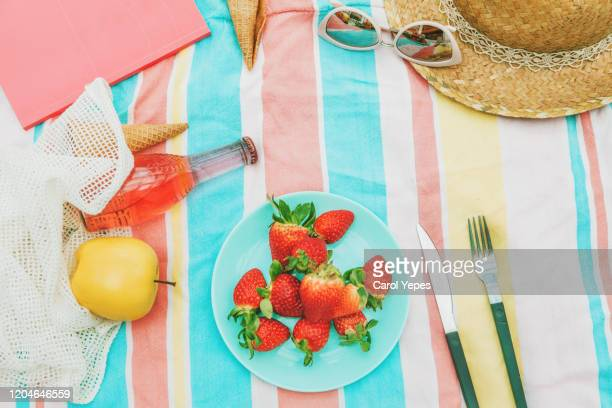 top view summer picnic.copyspace - picnic blanket stock pictures, royalty-free photos & images