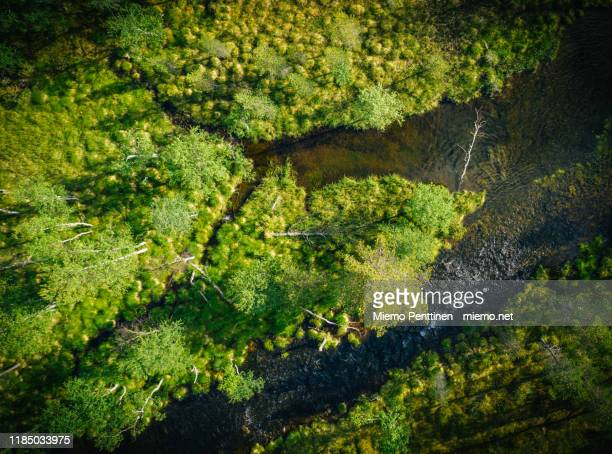 top-down aerial view of a narrow river flowing through remote marshland in the finnish lapland - sumpmark bildbanksfoton och bilder