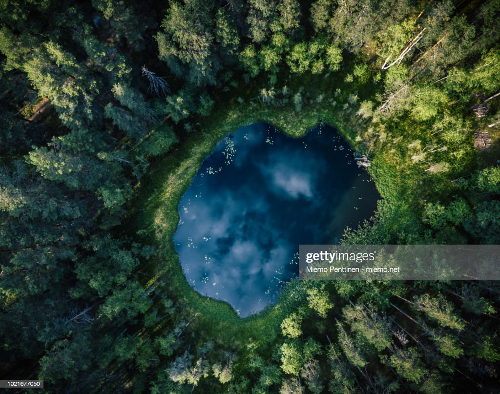 Top-down aerial view of a small pond in the middle of a forest, reflecting clouds in the sky : Stock-Foto