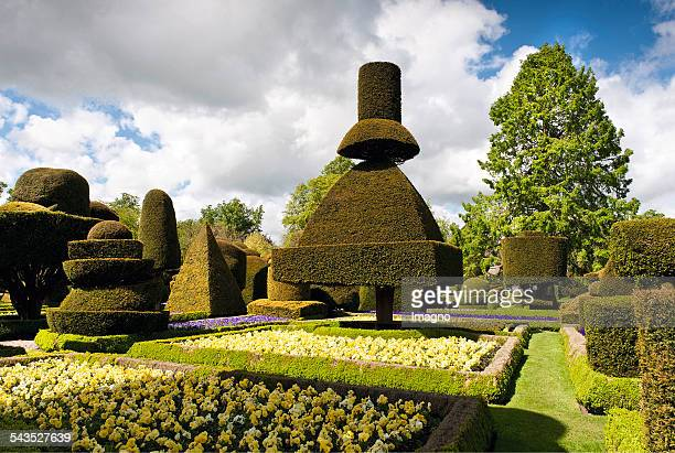 Topiary at Levens Hall About 2000