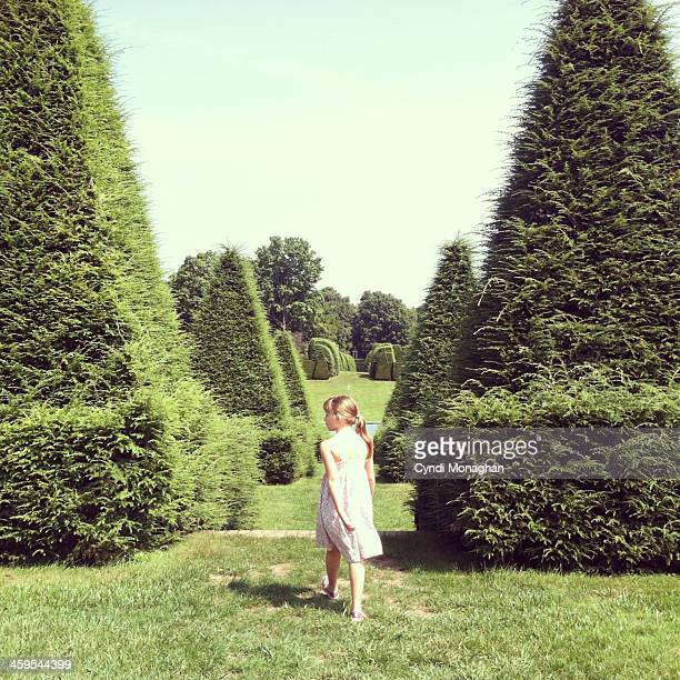 topiary garden - green dress stock pictures, royalty-free photos & images