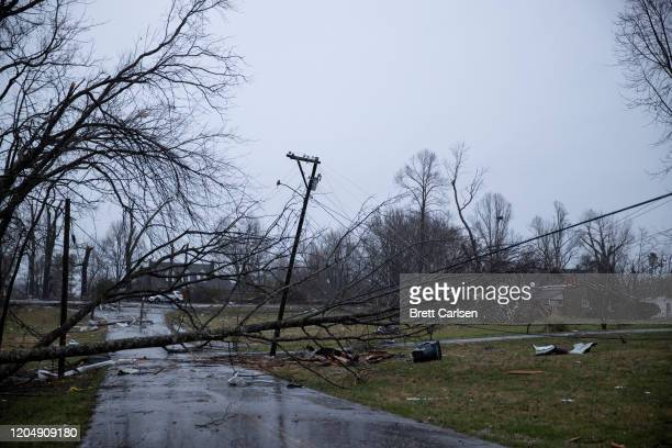 Toppled power lines and trees caused by one of several tornadoes that tore through the state overnight block a roadway on March 3 2020 in Cookeville...