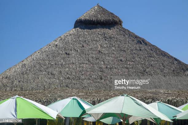 tops of green and white umbrellas in foreground, thatched roof and blue sky beyond; costalegre, jalisco, mexico - timothy hearsum stock-fotos und bilder