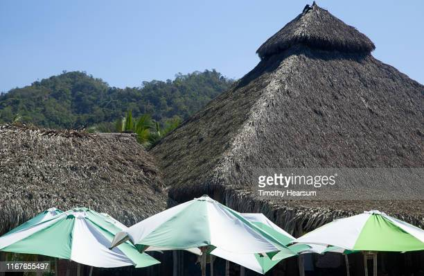 tops of green and white umbrellas in foreground, thatched roofs, tree-covered hills and blue sky beyond; costalegre, jalisco, mexico - timothy hearsum stock-fotos und bilder