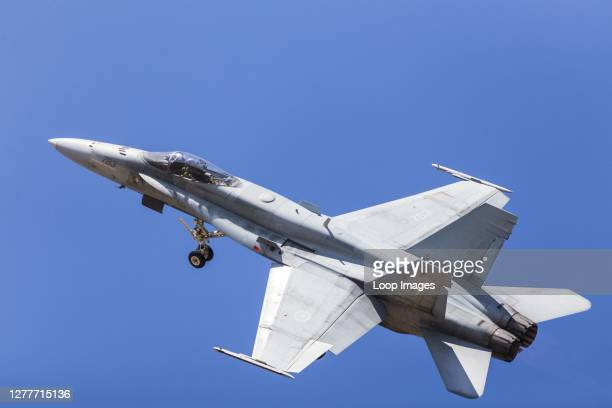 Topside of a Royal Canadian Air Force CF-18 Hornet.