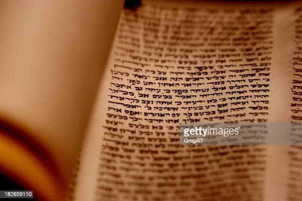 Torah Scroll Closeup
