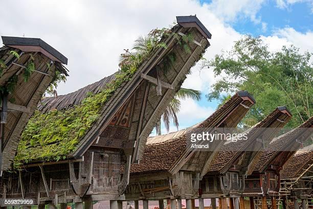 Toraja Traditional Houses