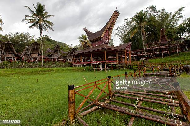 toraja traditional houses - rantepao stock photos and pictures