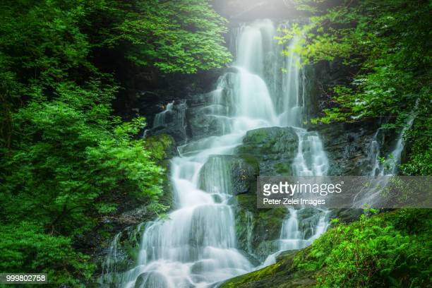 torc waterfall, ring of kerry, ireland - falling water stock photos and pictures